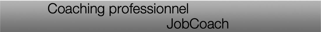 Titre jobcoach article